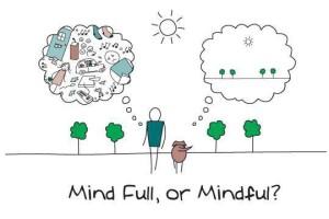 Mindfull-or-mind-full