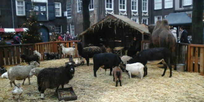 Kerstmarkt in Dordrecht 2016
